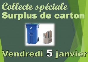surplus-de-carton-2018